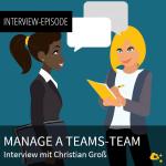 webseite_manageateamsteam